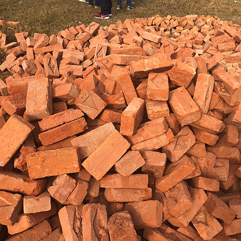 Bricks for Nepal